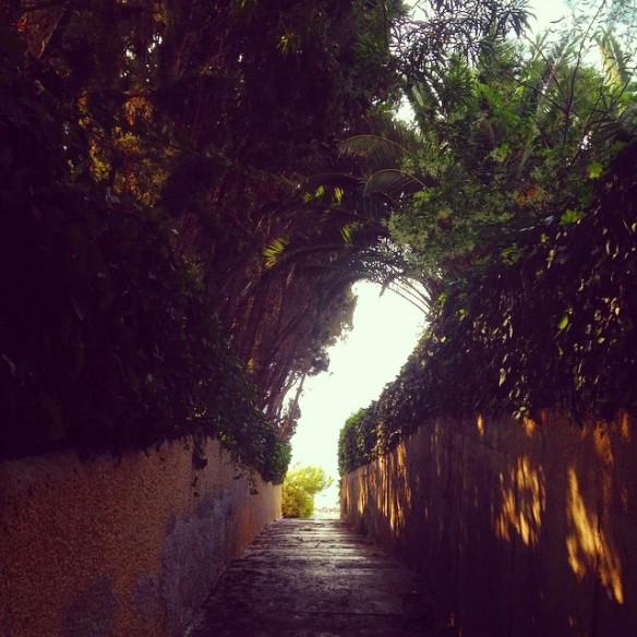 Acceso_playa_barranc_aigues_campello_alicante