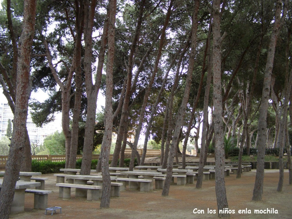 Pinada_Salesianos El Campello Alicante