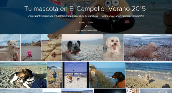 Tu mascota en El Campello 2015 Album Flickr
