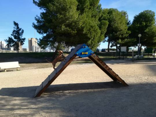 Juego de Ability - Parque Can